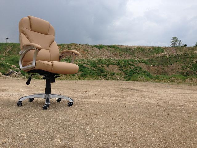 otáčecí židle