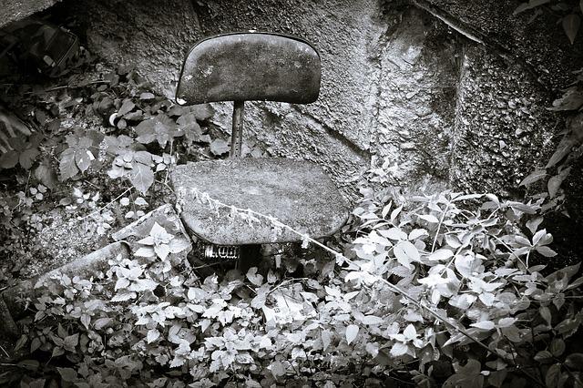 zarostlá židle