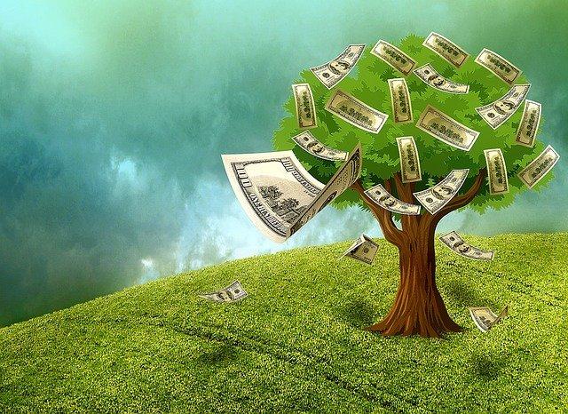 peníze na stromě.jpg