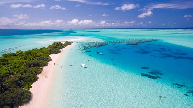 tropické pobřeží.jpg